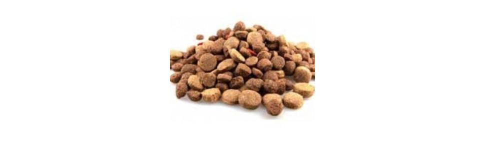 Ξηρή Τροφή Σκύλου | Μεγάλη Ποικιλία σε Προσφορές | Petfan.gr